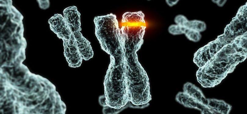 Генна мутация