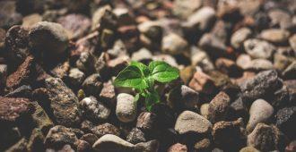 Малките Неща Правят Най-големи Промени