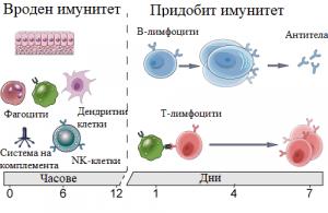 Придобит и вроден имунитет